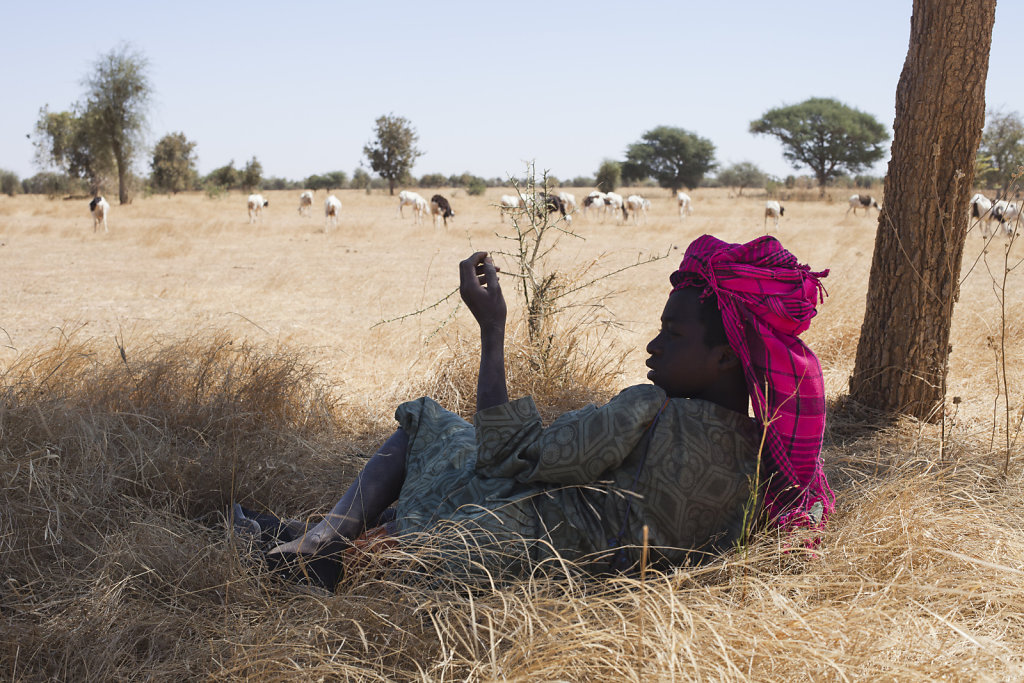 Terres de savoirs / Changement climatique et sécurité alimentaire au Sénégal